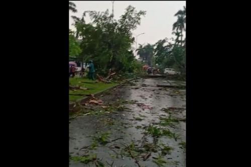 https: img.okezone.com content 2021 04 15 338 2395154 21-personel-dikerahkan-evakuasi-57-pohon-tumbang-di-jakarta-timur-3UHl1yywO9.jpeg