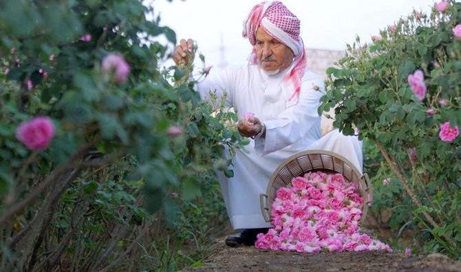 https: img.okezone.com content 2021 04 17 406 2396286 bunga-mawar-di-arab-saudi-bermekaran-di-bulan-ramadhan-TfXkSEdaiC.jpg