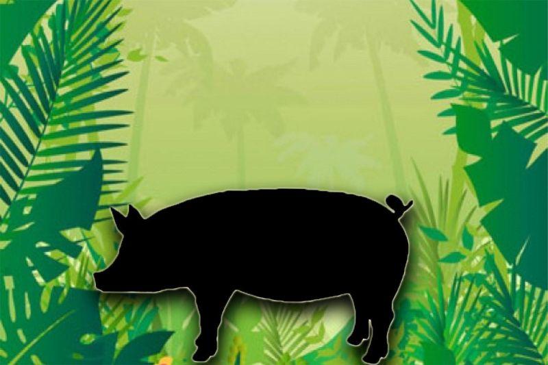 https: img.okezone.com content 2021 04 28 612 2402106 heboh-babi-ngepet-ditemukan-di-depok-benarkah-ukurannya-bisa-berubah-FemHKrBxvV.jpg