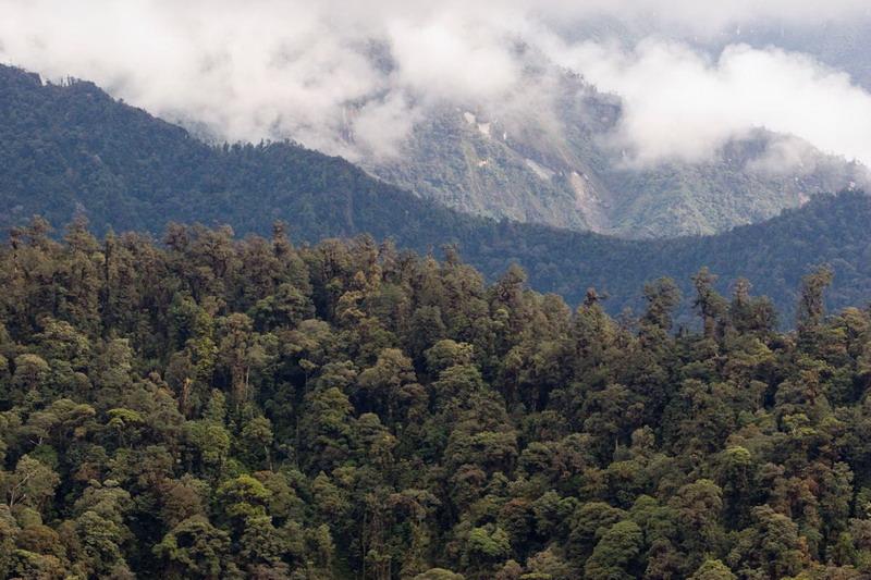 https: img.okezone.com content 2021 04 29 18 2402964 as-dan-indonesia-rayakan-keberhasilan-kerja-sama-atasi-perubahan-iklim-dan-pelestarian-alam-WgKI4b8NdH.jpg