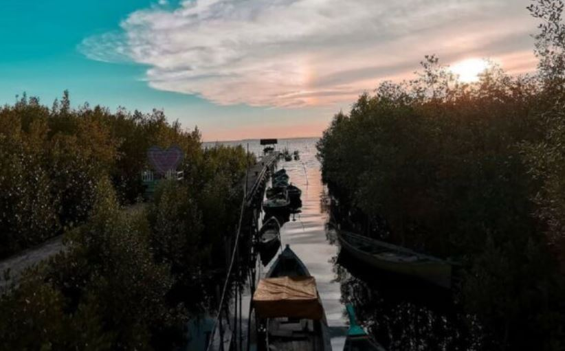https: img.okezone.com content 2021 04 30 406 2403171 pengunjung-ekowisata-mangrove-park-anjlok-tajam-selama-pandemi-qERnL6uM5t.JPG