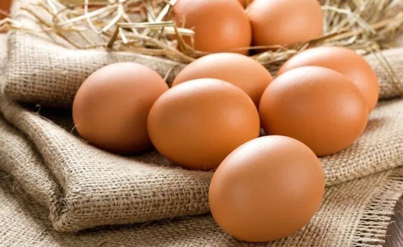 https: img.okezone.com content 2021 04 30 481 2403661 80-produksi-telur-di-indonesia-berpotensi-terinfeksi-bakteri-salmonella-4dsTa55ObP.jpg