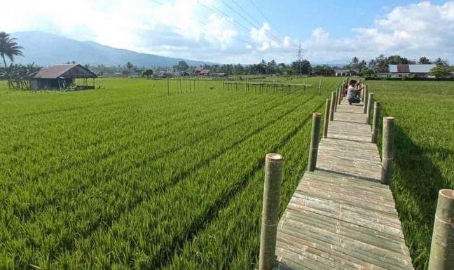 https: img.okezone.com content 2021 05 03 406 2404495 rejang-lebong-bangun-21-desa-wisata-dongkrak-pariwisata-daerah-tqfCqC9obo.JPG