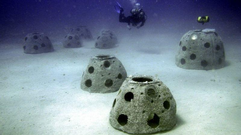 https: img.okezone.com content 2021 05 04 18 2405170 pemakaman-tak-biasa-dijadikan-terumbu-karang-buatan-hingga-dikirim-ke-luar-angkasa-9Qlovm9DFu.jpg
