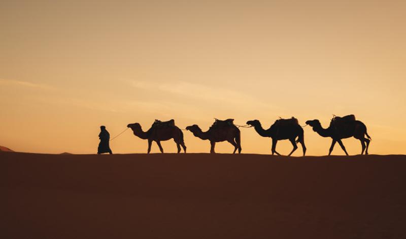 https: img.okezone.com content 2021 05 04 330 2405345 10-anak-tangga-rohani-kaum-sufi-cara-dekatkan-diri-kepada-allah-ta-ala-F71thhmkem.jpg