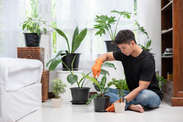 https: img.okezone.com content 2021 05 04 612 2405604 merawat-tanaman-hias-ternyata-bisa-jaga-berat-badan-dan-daya-ingat-lho-3pQIwXI7AN.jpg