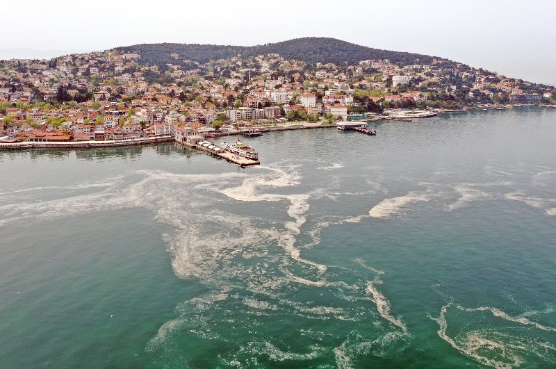 https: img.okezone.com content 2021 05 05 406 2406123 laut-marmara-tercemar-lendir-agar-agar-pariwisata-turki-terancam-DR2ipzMlkD.jpg