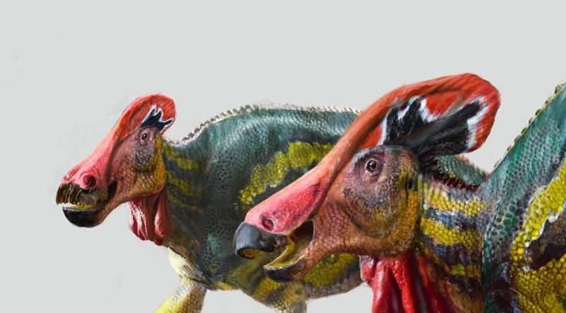 https: img.okezone.com content 2021 05 16 18 2410749 peneliti-temukan-dinosaurus-spesies-baru-di-meksiko-lLPeTfFQaH.jpg