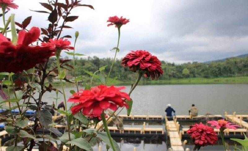https: img.okezone.com content 2021 05 20 408 2413021 ini-5-danau-yang-jadi-destinasi-wisata-pilihan-turis-di-solok-yByXqhtZIR.jpg