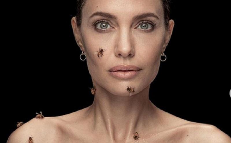 https: img.okezone.com content 2021 05 21 194 2413359 potret-seram-tubuh-angelina-jolie-dipenuhi-lebah-hpUhkky70R.jpg