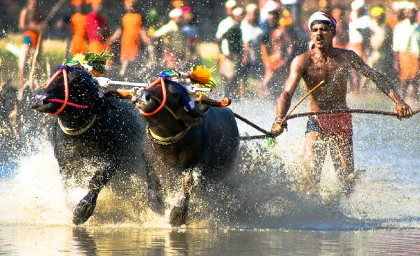 https: img.okezone.com content 2021 05 23 406 2414226 5-festival-budaya-terkenal-di-negara-bagian-india-4fub68qOBE.jpg