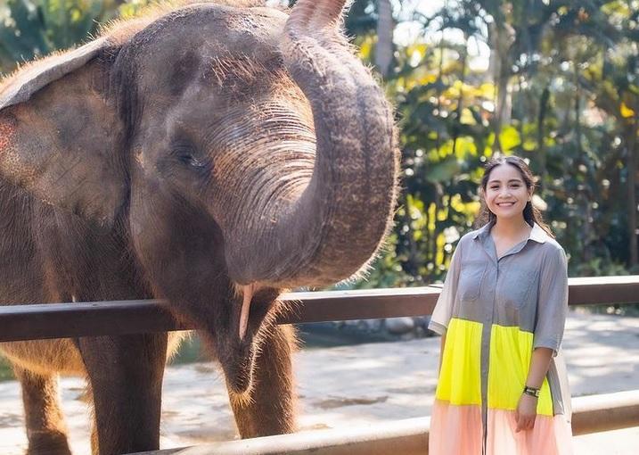 https: img.okezone.com content 2021 05 31 33 2418134 nagita-slavina-ngidam-lihat-gajah-netizen-fokus-ke-aura-yang-dipancarkan-Jazjhcz8SA.jpg