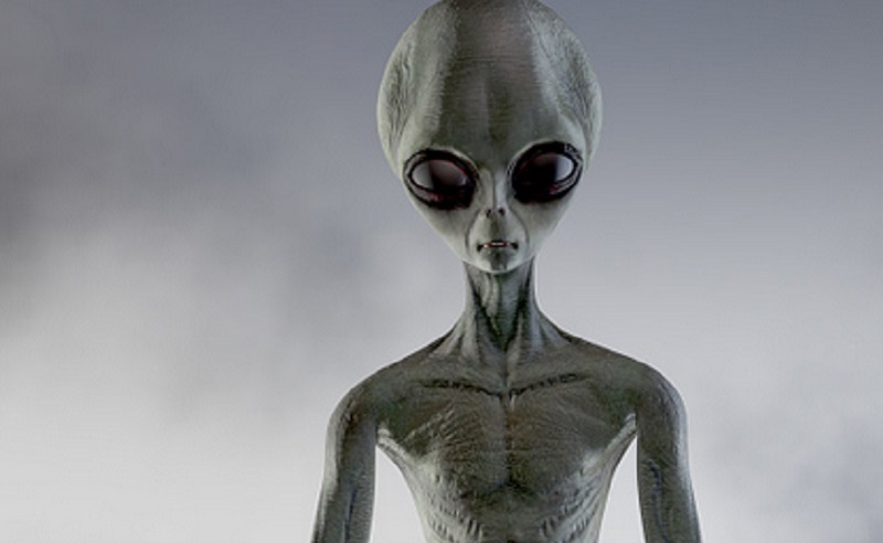 https: img.okezone.com content 2021 06 03 16 2419638 makhluk-aneh-meneror-di-jalanan-apakah-alien-m4PYjJtYW2.jpg