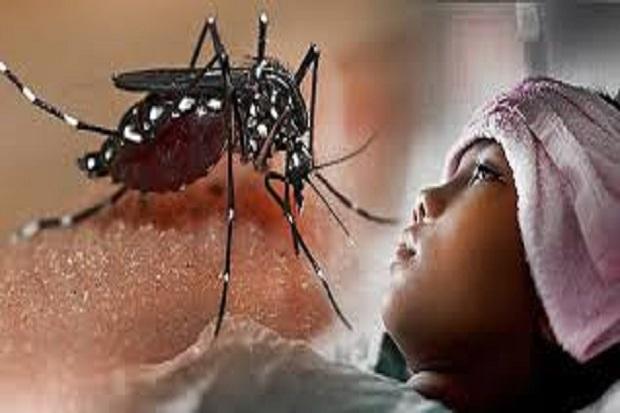https: img.okezone.com content 2021 06 07 338 2421209 3-orang-meninggal-kabupaten-bekasi-waspada-demam-berdarah-vzxFZWVkVy.jpg