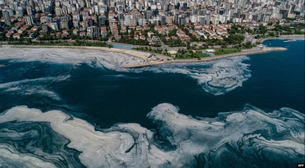 https: img.okezone.com content 2021 06 07 406 2421244 laut-marmara-tercemar-lendir-turki-siapkan-penanggulangan-syqzQKphHA.jpg