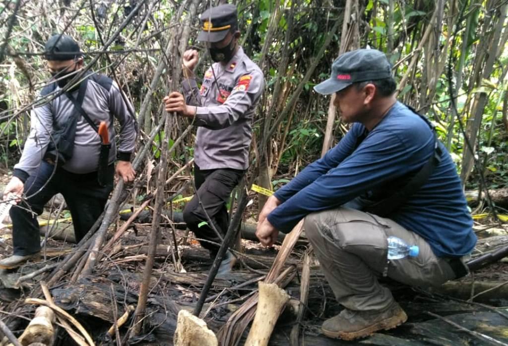 https: img.okezone.com content 2021 06 08 340 2421815 induk-gajah-35-tahun-ditemukan-mati-tinggal-tulang-belulang-AZkeLpmbXU.jpeg