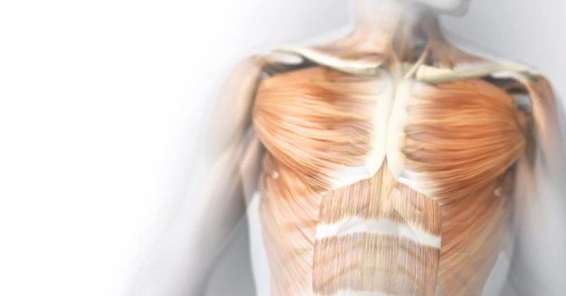 https: img.okezone.com content 2021 06 08 614 2422181 tubuh-manusia-miliki-sistem-pendingin-dijelaskan-dalam-alquran-dan-sains-5PpRsY6p2I.jpg