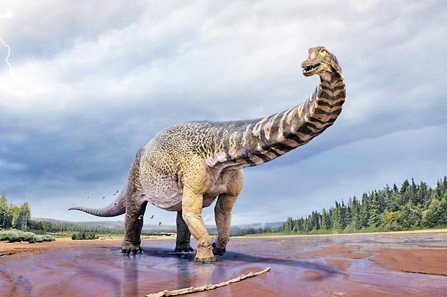 https: img.okezone.com content 2021 06 09 406 2422282 dinosaurus-terbesar-ditemukan-di-australia-badannya-sepanjang-lapangan-basket-wi7rceDps0.jpg