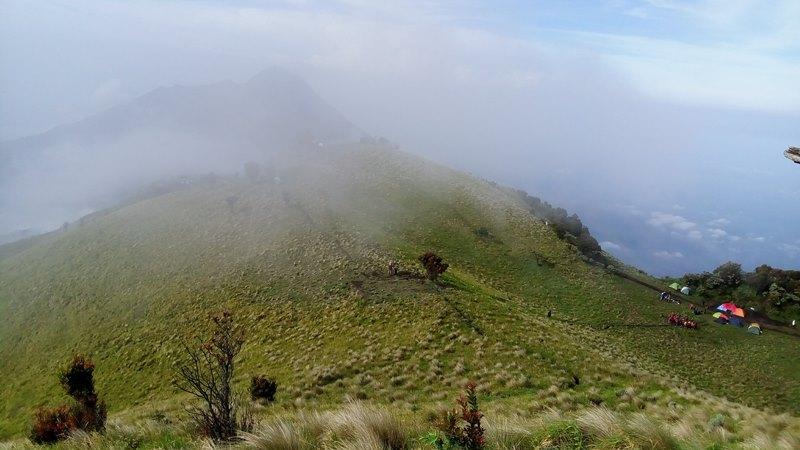 https: img.okezone.com content 2021 06 09 406 2422401 pendakian-gunung-merbabu-dibuka-mulai-14-juni-buruan-open-bo-KiTX763uSa.jpg