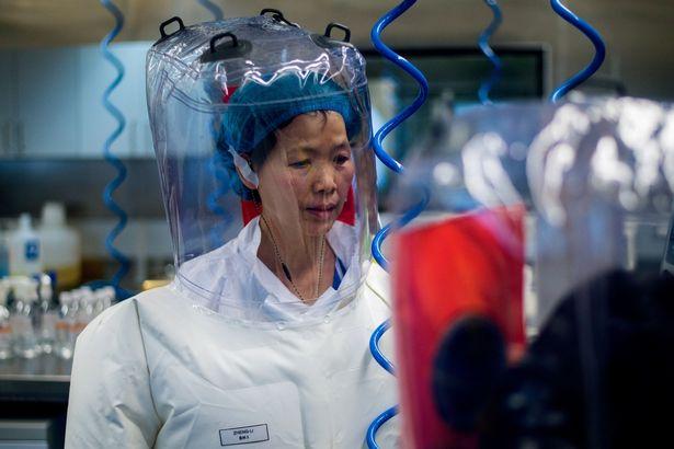 https: img.okezone.com content 2021 06 17 18 2426645 wanita-kelelawar-wuhan-bantah-teori-covid-berasal-dari-laboratorium-virus-china-jTxwLm2old.jpg