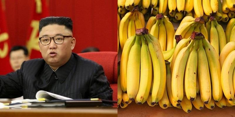 https: img.okezone.com content 2021 06 20 298 2427986 korea-utara-krisis-pangan-harga-pisang-mencapai-rp650-ribu-per-kilo-SCm1IlaNpL.jpg