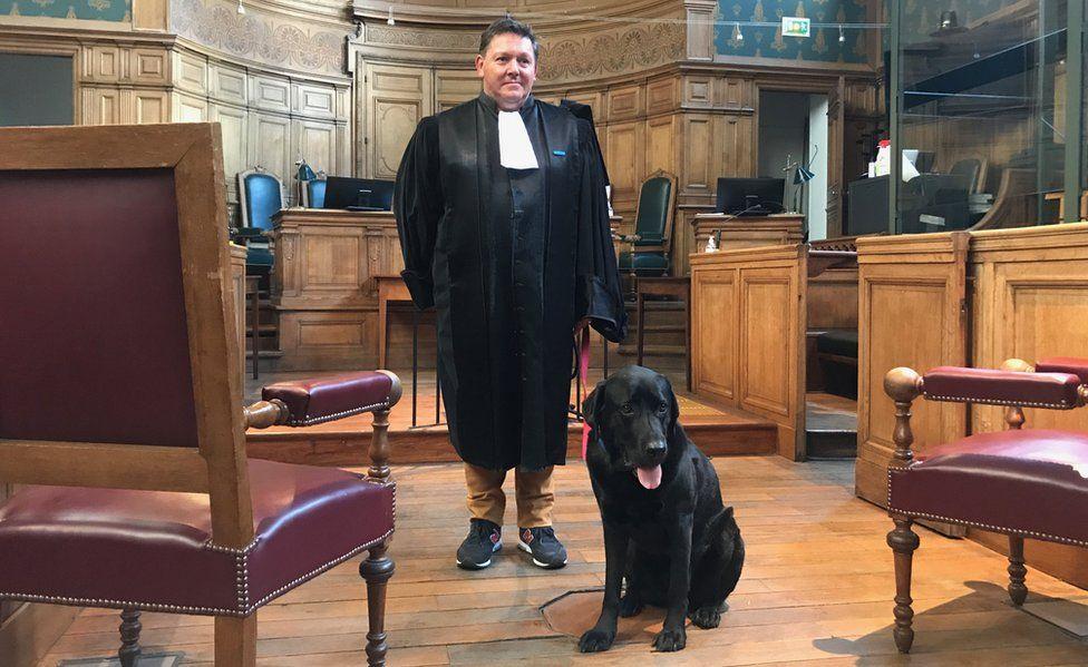 https: img.okezone.com content 2021 06 22 18 2428882 kisah-anjing-yang-bantu-tenangkan-korban-kejahatan-yang-cemas-di-pengadilan-dHDQ5DxGe6.jpg