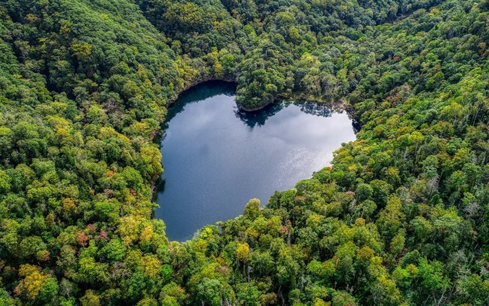 https: img.okezone.com content 2021 06 23 408 2429491 pesona-danau-unik-bentuknya-hati-surga-tersembunyi-di-tengah-hutan-HaOiO7lukJ.jpg