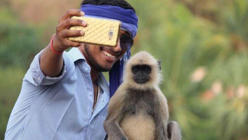 https: img.okezone.com content 2021 07 01 406 2433587 wisatawan-dilarang-selfie-di-tempat-ini-nekat-melanggar-tanggung-akibatnya-5V9jFBbPIP.JPG