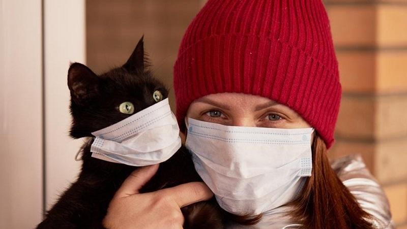 https: img.okezone.com content 2021 07 05 481 2435723 kucing-dan-anjing-peliharaan-bisa-sebarkan-covid-19-epidemiolog-minta-dokter-hewan-bertindak-hqHmdRGyUX.jpg