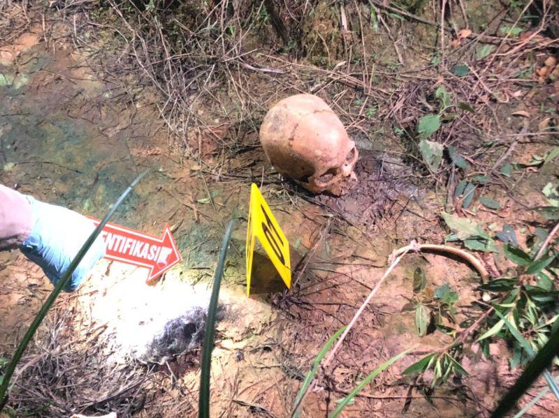 https: img.okezone.com content 2021 07 08 340 2437760 tengkorak-manusia-ditemukan-di-kebun-sawit-ini-identitasnya-41QcT5cB2W.jpg