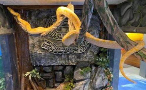 https: img.okezone.com content 2021 07 08 406 2437667 gawat-ular-piton-4-meter-lepas-dari-kandang-tebar-ancaman-LrPwKFGUyb.JPG