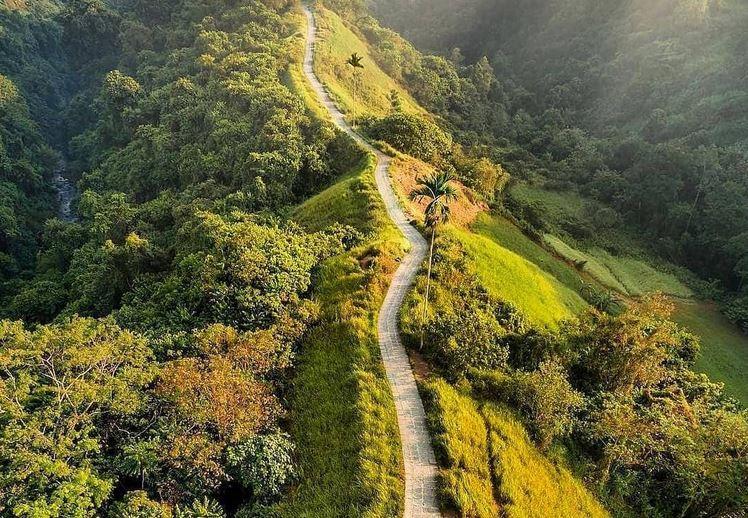 https: img.okezone.com content 2021 07 15 408 2440891 fakta-menarik-campuhan-ridge-walk-jalur-trekking-dengan-keindahan-alam-maksimal-Y7A8IOCSZk.JPG
