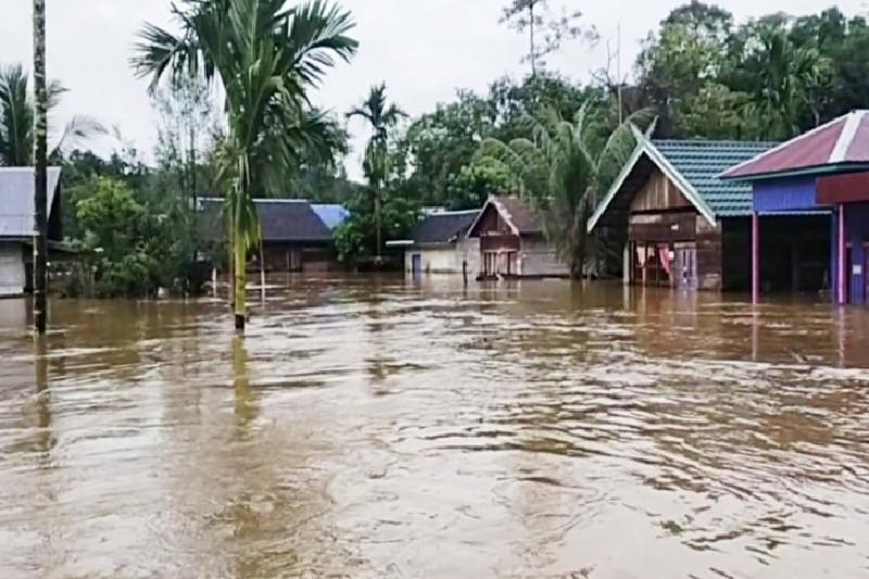 https: img.okezone.com content 2021 07 16 340 2441401 banjir-rendam-rumah-warga-4-desa-di-wilayah-pedalaman-kotawaringin-timur-XI2vjmOFgQ.jpg