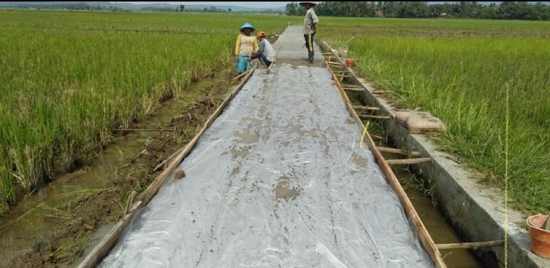 https: img.okezone.com content 2021 07 17 1 2442228 petani-hingga-nelayan-di-garut-rasakan-manfaat-jalan-usaha-tani-kementan-XxFCFWiYQX.jpg