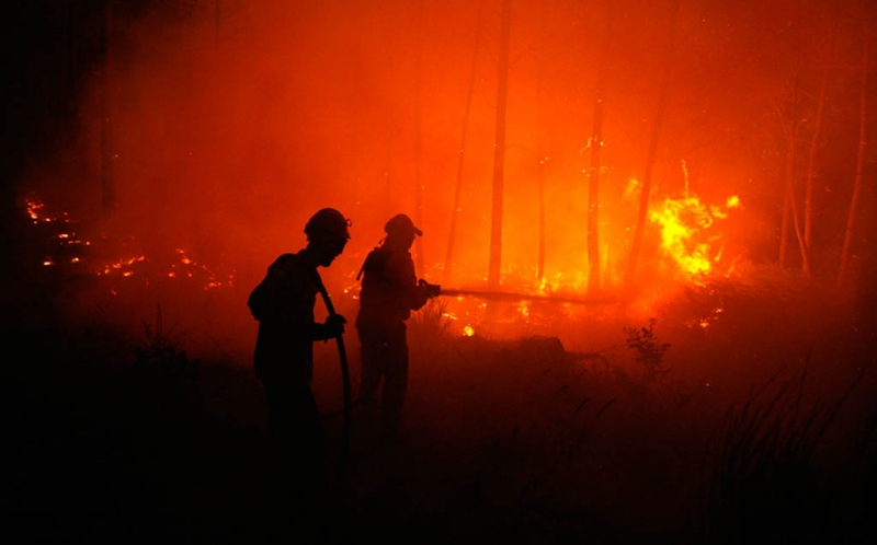 Kebakaran Kantor BPOM, Polisi Amankan Lima Orang : Okezone Megapolitan