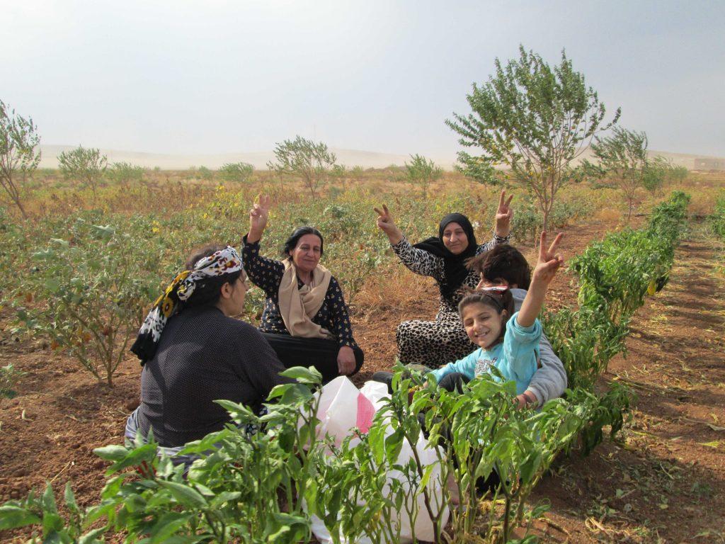 https: img.okezone.com content 2021 07 19 406 2443022 dihuni-ribuan-janda-inilah-desa-khusus-perempuan-korban-kdrt-oBm7K76MEa.jpg