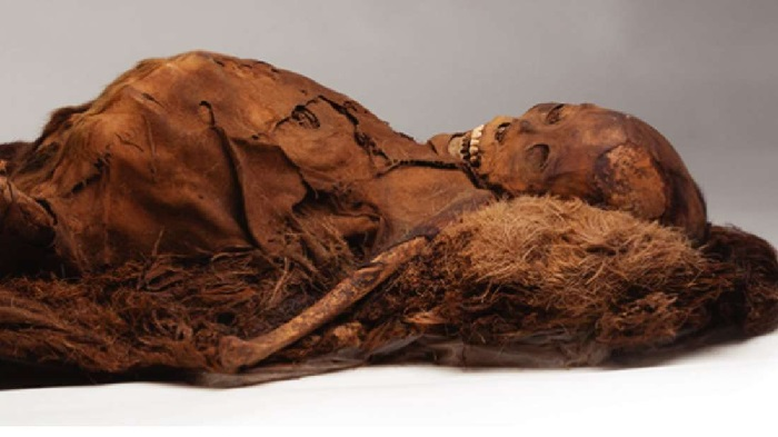 https: img.okezone.com content 2021 07 19 406 2443037 misteri-kain-kafan-kuno-pembungkus-mumi-mesir-berusia-2-300-tahun-terungkap-R9HOghmQBt.jpg