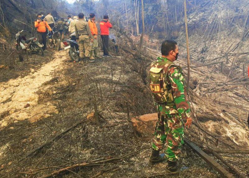 https: img.okezone.com content 2021 07 21 340 2444035 50-hektare-hutan-lindung-bukit-suligi-kebakaran-XwETMs1SKG.jpg
