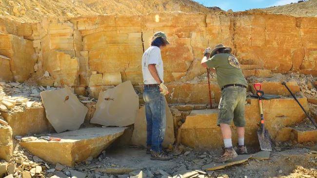 https: img.okezone.com content 2021 07 30 406 2448211 fosil-hewan-tertua-di-dunia-ditemukan-umurnya-890-juta-tahun-JEgIx94Cmi.JPG