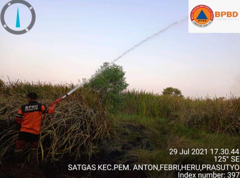 https: img.okezone.com content 2021 07 30 608 2448352 kebakaran-7-hektare-lahan-di-ogan-ilir-berhasil-dipadamkan-cBIkZlP7LW.jpg