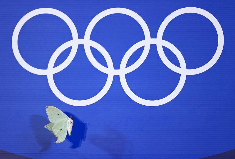https: img.okezone.com content 2021 08 03 43 2449954 indonesia-tak-ikut-olimpiade-1964-dan-1980-ini-alasannya-ux2UMr7Sld.jpg