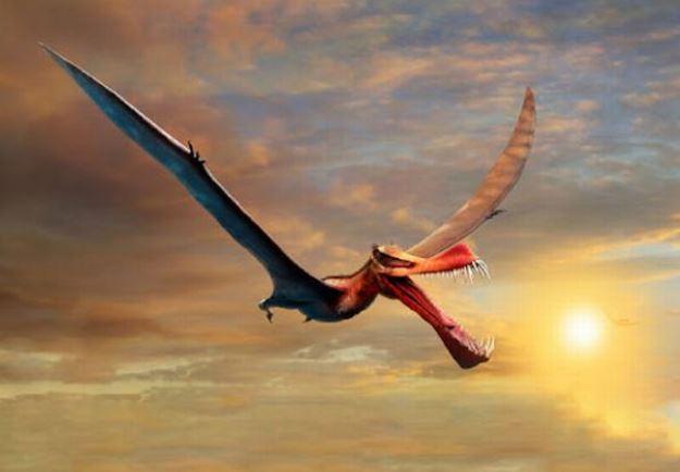 https: img.okezone.com content 2021 08 14 406 2455638 heboh-fosil-dinosaurus-mirip-naga-ditemukan-punya-sayap-berukuran-7-meter-IkndcSpUfS.JPG