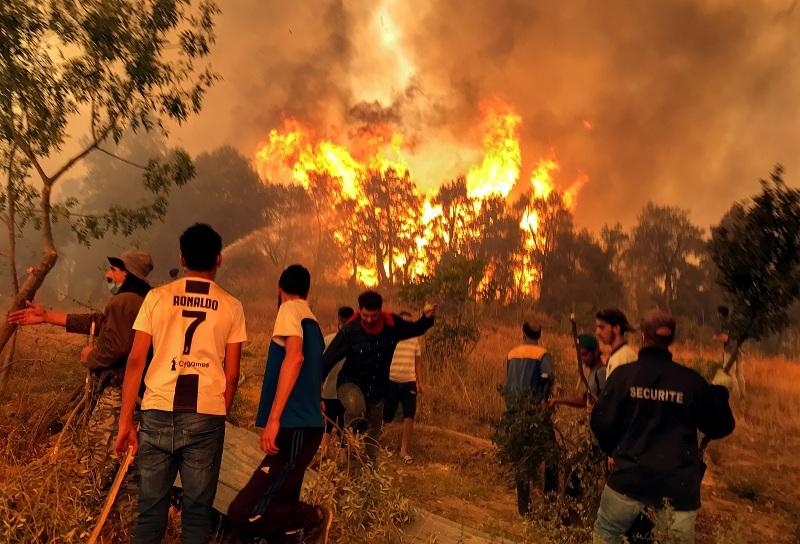 https: img.okezone.com content 2021 08 15 18 2455780 deretan-kebakaran-hutan-hebat-di-berbagai-negara-puluhan-nyawa-melayang-7LziwkVUx3.jpeg