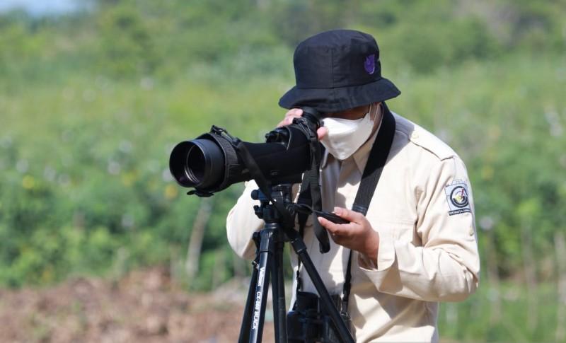 https: img.okezone.com content 2021 08 15 406 2455935 birdwatching-solusi-wisata-di-tengah-pandemi-covid-19-mlhk2iixXP.jpg