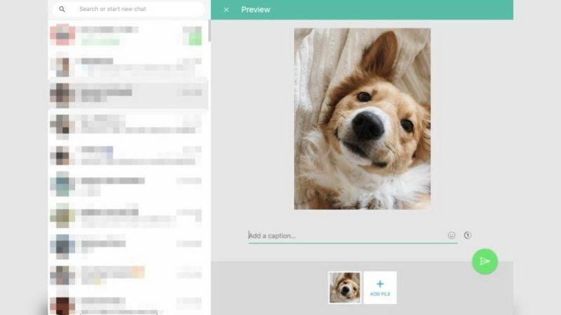https: img.okezone.com content 2021 08 15 57 2455933 makin-keren-whatsapp-web-dan-desktop-sekarang-bisa-edit-foto-q0nfjceHhz.jpg