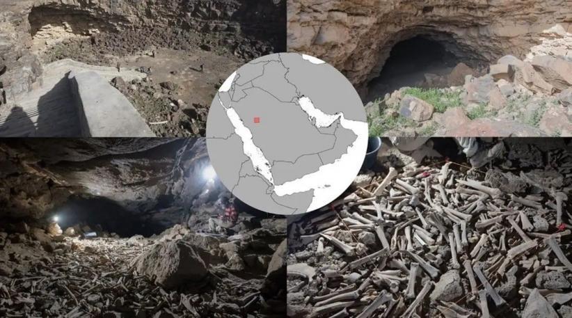 https: img.okezone.com content 2021 08 18 406 2457405 ratusan-ribu-kerangka-hewan-dan-manusia-di-gua-dikumpulkan-hyena-selama-7-000-tahun-PN5YBbm4Fp.jpg