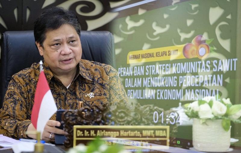 Potensi Kelapa Sawit, Menko Airlangga: Seharusnya Indonesia Sudah Menjadi Price Leader