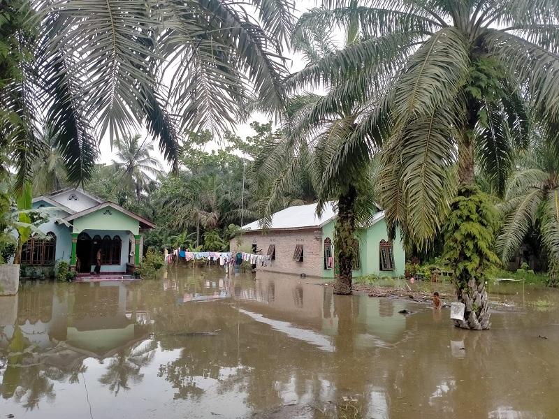 https: img.okezone.com content 2021 08 20 608 2458205 banjir-di-batubara-berpotensi-meluas-bpbd-siaga-penuh-24-jam-Ah7859LFUo.jpeg