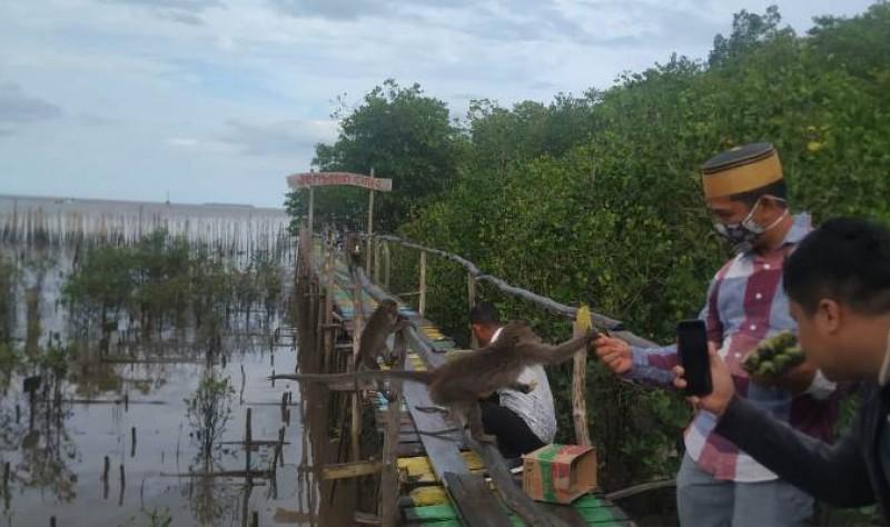 https: img.okezone.com content 2021 08 27 406 2462361 segera-dikeruk-muara-sungai-kurau-babel-bakal-dijadikan-objek-wisata-bahari-cTKC1Ecf1c.jpg