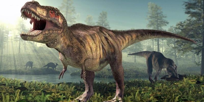 https: img.okezone.com content 2021 08 29 56 2462754 tangan-mungil-t-rex-ada-fungsinya-gak-sih-ini-faktanya-Tt7eaBQr9l.jpg